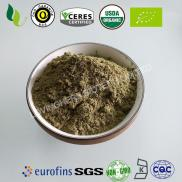 Organic Dandelion Leaf Powder