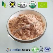 Organic Carrot Powder