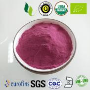 Organic Bilberry Extract